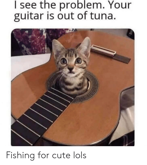 Cute, Guitar, and Fishing: I see the problem. Your  guitar is out of tuna. Fishing for cute lols