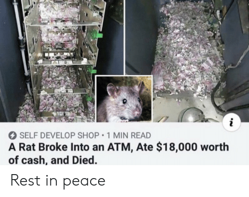 Reddit, Peace, and Rest: i  SELF DEVELOP SHOP 1 MIN READ  A Rat Broke Into an ATM, Ate $18,000 worth  of cash, and Died. Rest in peace