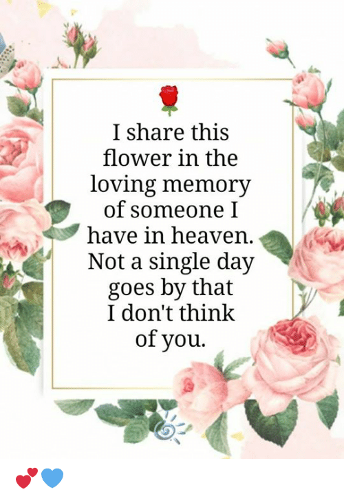 Heaven, Memes, and Flower: I share this  flower in the  loving memory  of someone I  have in heaven  Not a single day  goes by that  I don't think  of you. 💕💙