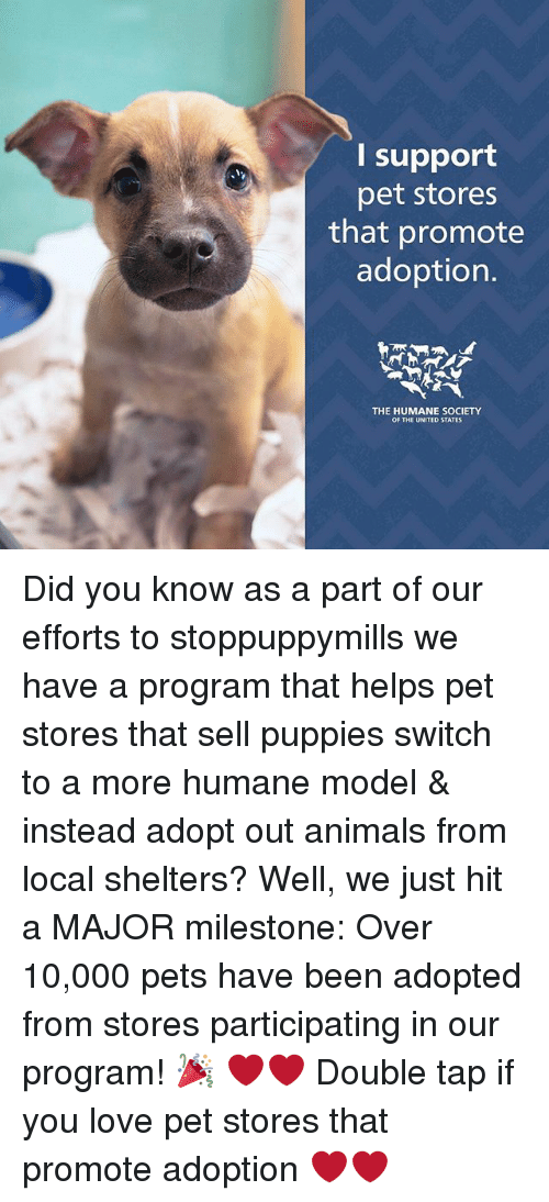 Animals, Love, and Memes: I support  pet stores  that promote  adoption.  THE HUMANE SOCIETY  OF THE UNITED STATES Did you know as a part of our efforts to stoppuppymills we have a program that helps pet stores that sell puppies switch to a more humane model & instead adopt out animals from local shelters? Well, we just hit a MAJOR milestone: Over 10,000 pets have been adopted from stores participating in our program! 🎉 ❤️❤️ Double tap if you love pet stores that promote adoption ❤️❤️