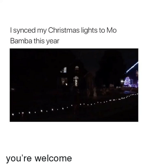 Christmas, Girl Memes, and Lights: I synced my Christmas lights to Mo  Bamba this year you're welcome