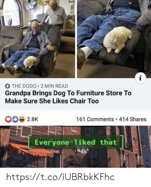Furniture: i  THE DODO 2 MIN READ  Grandpa Brings Dog To Furniture Store To  Make Sure She Likes Chair Too  OD 2.8K  161 Comments 414 Shares  Everyone 1iked that https://t.co/iUBRbkKFhc