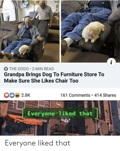 Grandpa, Furniture, and Chair: i  THE DODO 2 MIN READ  Grandpa Brings Dog To Furniture Store To  Make Sure She Likes Chair Too  161 Comments 414 Shares  2.8K  Everyone 1iked that Everyone liked that