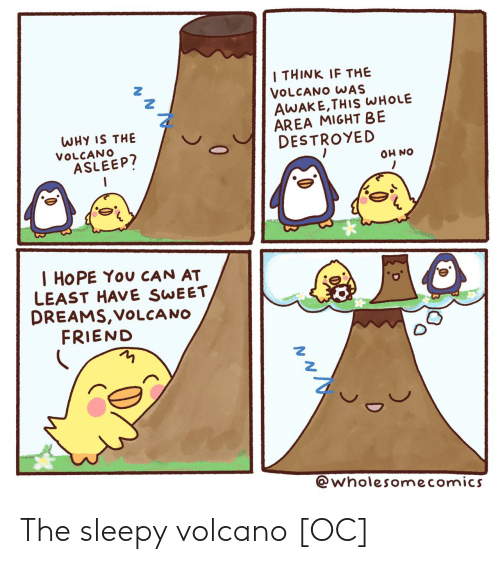 sleepy: I THINK IF THE  VOLCANO WAS  AWAKE,THIS WHOLE  AREA MIGHT BE  DESTROYED  WHY IS THE  VOLCANO  ASLEEP?  ON HO  I HOPE You CAN AT  LEAST HAVE SWEET  DREAMS,VOLCA NO  FRIEND  @wholesomecomics  0 The sleepy volcano [OC]