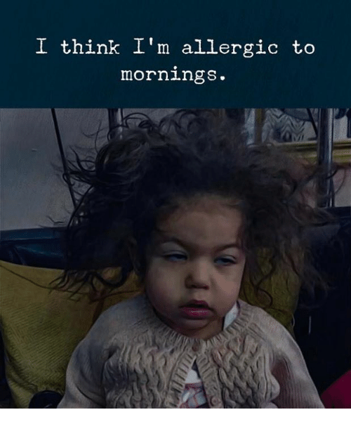 Think, I Think, and Mornings: I think I'm allergic to  mornings