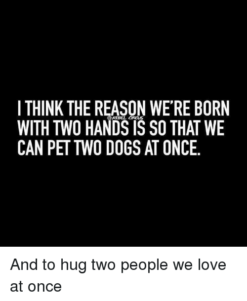 Dogs, Love, and Reason: I THINK THE REASON WE'RE BORN  WITH TWO HANDS IS SO THAT WE  CAN PET TWO DOGS AT ONCE  @REBEL CIRCUS <p>And to hug two people we love at once</p>