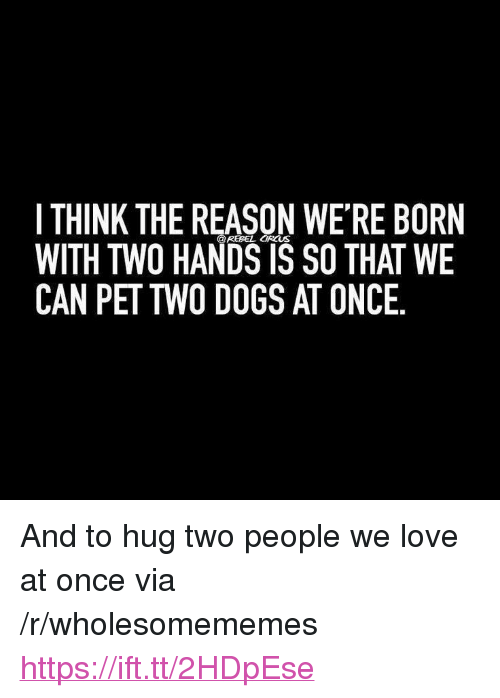 "Dogs, Love, and Reason: I THINK THE REASON WE'RE BORN  WITH TWO HANDS IS SO THAT WE  CAN PET TWO DOGS AT ONCE  @REBEL CIRCUS <p>And to hug two people we love at once via /r/wholesomememes <a href=""https://ift.tt/2HDpEse"">https://ift.tt/2HDpEse</a></p>"