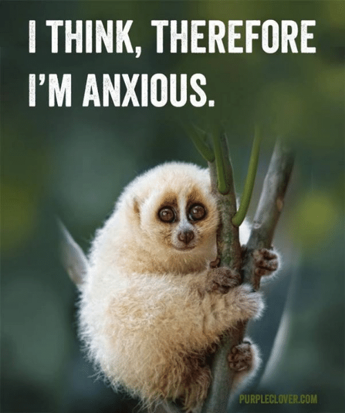Memes, 🤖, and Com: I THINK, THEREFORE  I'M ANXIOUS  PURPLECLOVER.COM