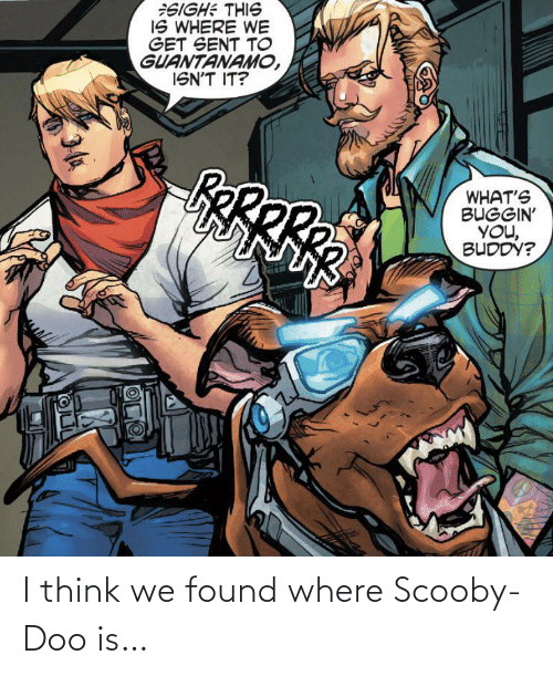 Found: I think we found where Scooby-Doo is…