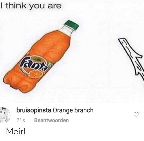 Fanta: I think you are  fanta  bruisopinsta Orange branch  Beantwoorden  21s Meirl