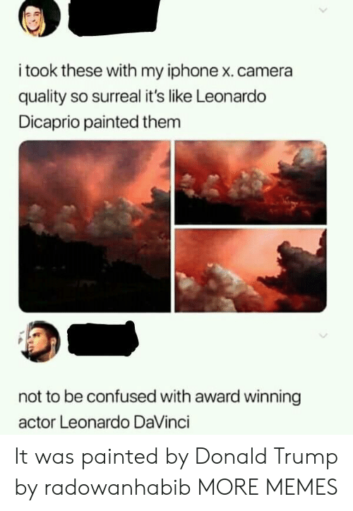Confused, Dank, and Donald Trump: i took these with my iphone x. camera  quality so surreal it's like Leonardo  Dicaprio painted them  not to be confused with award winning  actor Leonardo DaVinci It was painted by Donald Trump by radowanhabib MORE MEMES