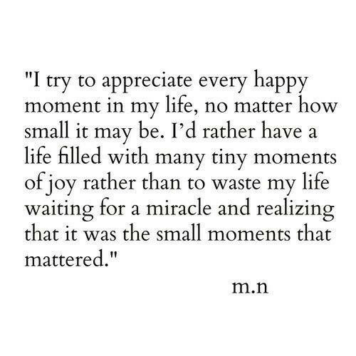 "Life, Appreciate, and Happy: ""I try to appreciate every happy  moment in my life, no matter how  small it may be. I'd rather have  life filled with many tiny moments  of joy rather than to waste my life  waiting for a miracle and realizing  that it was the small moments that  mattered.""  m.n"