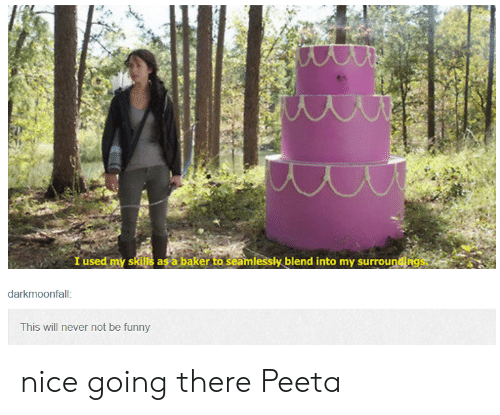 Nice Going: I used my skills as a baker to seamlessly blend into my surroungs  darkmoonfall  This will never not be funny nice going there Peeta