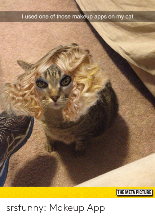 meta: I used one of those makeup apps on my cat  THE META PICTURE srsfunny:  Makeup App