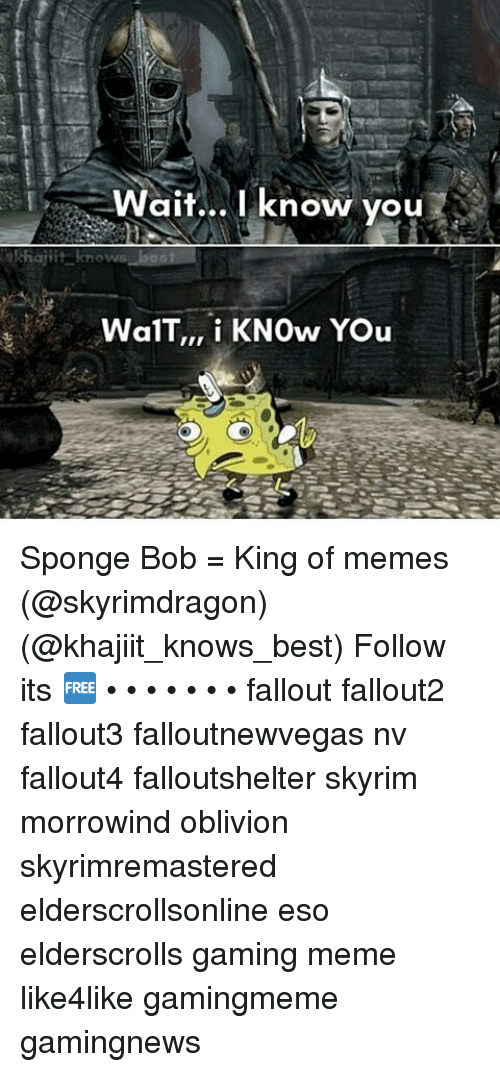 I Wait I Know You Khajiit Knows Wal TT I KNOw You Sponge Bob