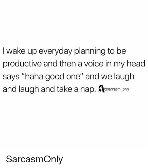 """Funny, Head, and Memes: I wake up everyday planning to be  productive and then a voice in my head  says """"haha good one"""" and we laugh  and laugh and take a nap. esarcasm.conly SarcasmOnly"""