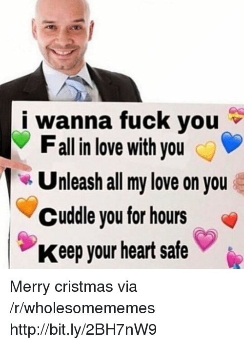 Fall, Love, and Heart: i wanna fuck you  Fall in love with you  Unleash all my love on you  Cuddle you for hours  Keep your heart safe Merry cristmas via /r/wholesomememes http://bit.ly/2BH7nW9