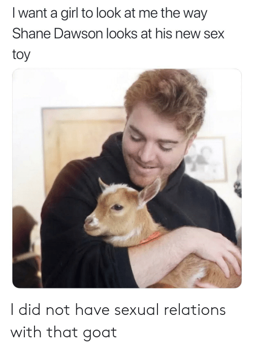 dawson: I want a girl to look at me the way  Shane Dawson looks at his new sex  toy I did not have sexual relations with that goat