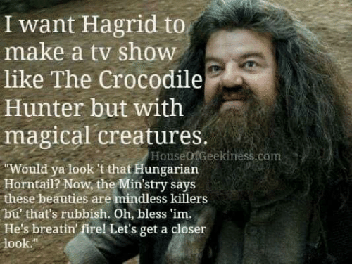 Memes, Hungarian, and 🤖: I want Hagrid to  like The Crocodile  magical creatures.  make a tv show  Hunter but with  HouseofGeekiness.com  Would ya look 't that Hungarian  Horntail? Now, the Min'stry says  these beauties are mindless killers  bu' that's rubbish. Oh, bless 'im.  He's breatin firel Let's get a closer  look.""