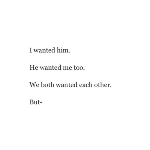 me too: I wanted him  He wanted me too.  We both wanted each other.  But