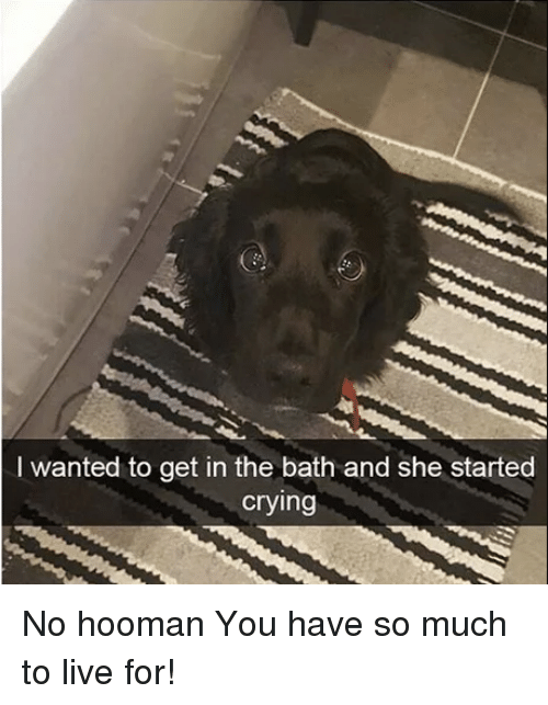 Crying, Live, and Wanted: I wanted to get in the bath and she started  crying No hooman You have so much to live for!