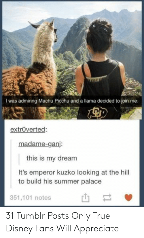 palace: I was admiring Machu Picchu and a llama decided to join me.  extroverted:  madame-ganj:  this is my dream  It's emperor kuzko looking at the hill  to build his summer palace  351,101 notes  t1 31 Tumblr Posts Only True Disney Fans Will Appreciate