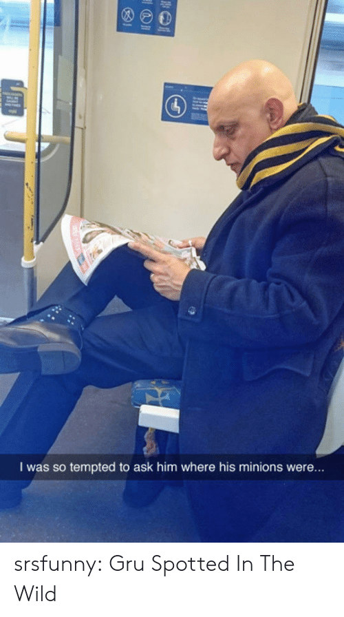 tempted: I was so tempted to ask him where his minions were.. srsfunny:  Gru Spotted In The Wild