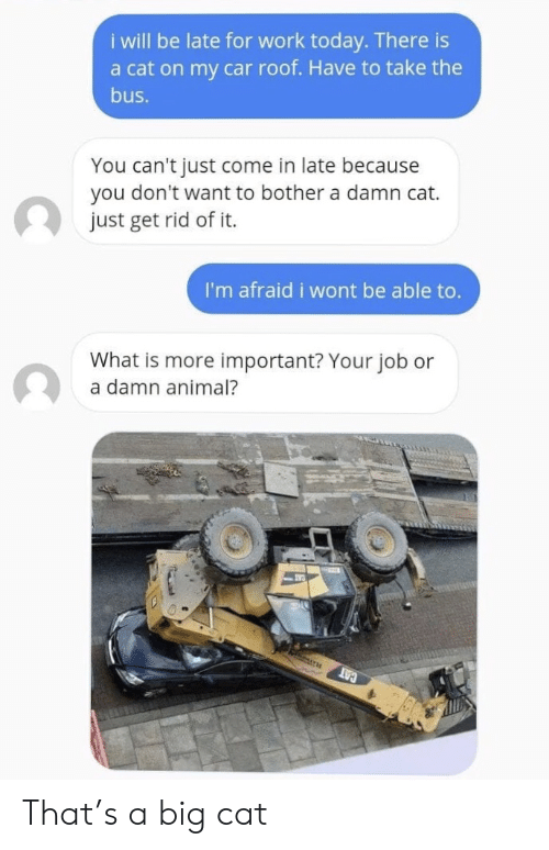 Rid: i will be late for work today. There is  a cat on my car roof. Have to take the  bus.  You can't just come in late because  you don't want to bother a damn cat.  just get rid of it.  I'm afraid i wont be able to.  What is more important? Your job or  a damn animal?  CAT That's a big cat