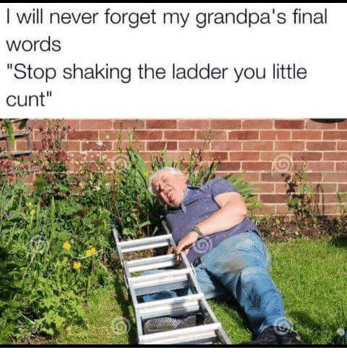 "Cunt, Dank Memes, and Never: I will never forget my grandpa's final  words  ""Stop shaking the ladder you little  cunt""  2"
