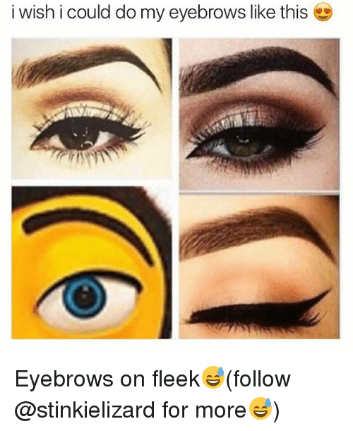 Memes, On Fleek, and 🤖: i wish i could do my eyebrows like this Eyebrows on fleek😅(follow @stinkielizard for more😅)