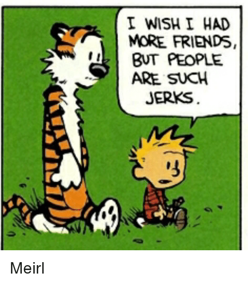 i wish i had more friends but people are such jerks 彡 friends