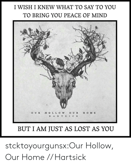 H O: I WISH I KNEW WHAT TO SAY TO YOU  TO BRING YOU PEACE OF MIND  O UR H O LL OWO U R H O M E  H ART S IC K  BUT I AM JUST AS LOST AS YOU stcktoyourgunsx:Our Hollow, Our Home // Hartsick