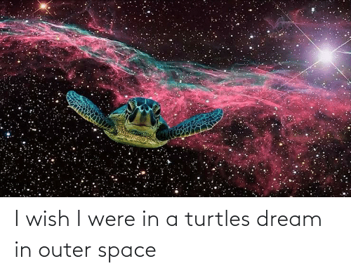 turtles: I wish I were in a turtles dream in outer space
