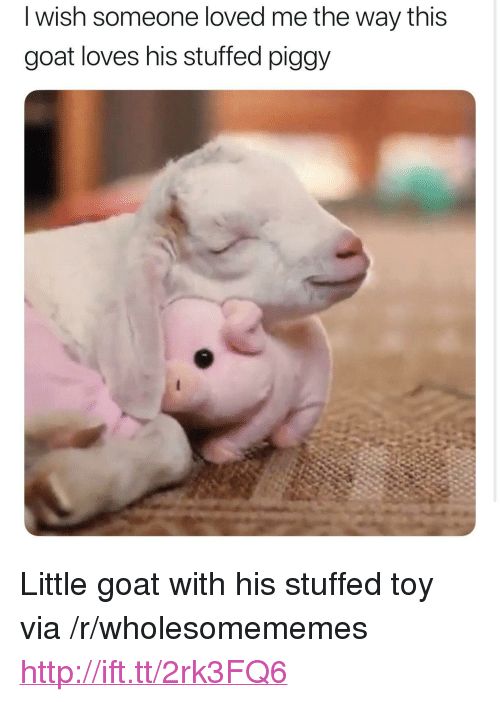 """Goat, Http, and Via: I wish someone loved me the way this  goat loves his stuffed piggy <p>Little goat with his stuffed toy via /r/wholesomememes <a href=""""http://ift.tt/2rk3FQ6"""">http://ift.tt/2rk3FQ6</a></p>"""
