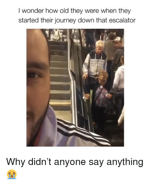 Journey, Memes, and Old: I wonder how old they were when they  started their journey down that escalator Why didn't anyone say anything 😭