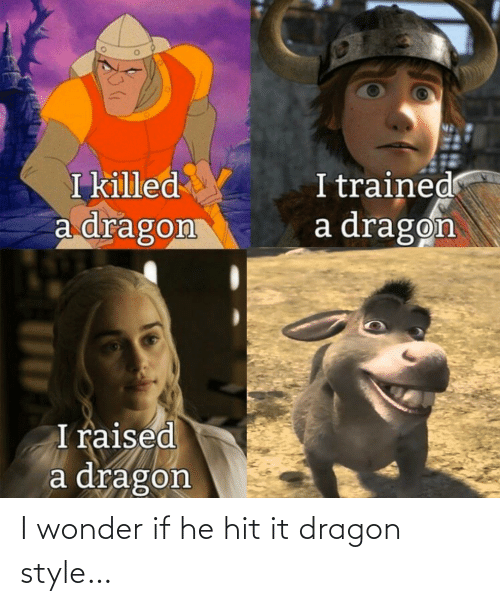 Wonder, Dragon, and Style: I wonder if he hit it dragon style…