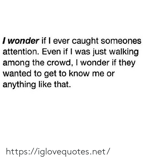 Was Just: I wonder if I ever caught someones  attention. Even if I was just walking  among the crowd, I wonder if they  wanted to get to know me or  anything like that. https://iglovequotes.net/