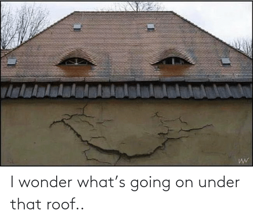 Under: I wonder what's going on under that roof..