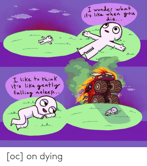 Its Like: I wonder what  it's like when you  die...  I like to think  it's like gently  falling asleep... [oc] on dying