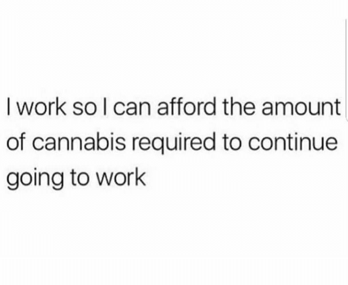 Memes, Work, and Cannabis: I work so I can afford the amount  of cannabis required to continue  going to work