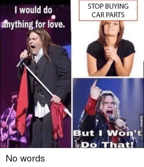 I Would Do Stop Buying Car Parts Anything For Love But I Won T Ido