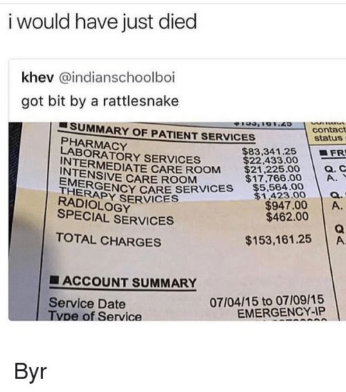 Carolina Panthers, Memes, and Date: i would have just died  khev @indianschoolboi  got bit by a rattlesnake  ーSUMMARY OF PATIENTSERVICES  contact  status  PHARMACY  LABORATORY SERVICES  $83,341.25 FR  $22,433.00  INTERMEDIA  $21,225.00  $17,766.00 | A.  ! Q. C  TE CARE ROOM  NIENSIVE CARE ROOM  EMERGEN  ERAPY SECAR SERVICES 5.564.00  RADIOLOGY  $1,423.0 o.  947.00 A  SPECIAL SERVICES  $462.00  TOTAL CHARGES  $153,161.25 A  ■ ACCOUNT SUMMARY  Service Date  Tvpe of Service  07/04/15 to 07/09/15  EMERGENCY-IP Byr