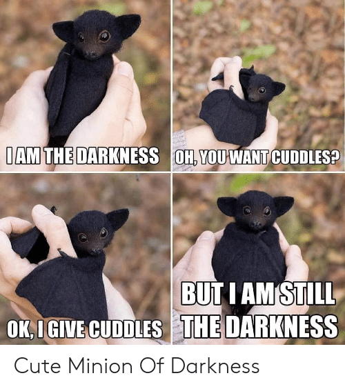 the darkness: IAM THE DARKNESS OH, YOUWANT CUDDLES?  BUT I AM STILL  OK,IGIVE CUDDLES THE DARKNESS Cute Minion Of Darkness