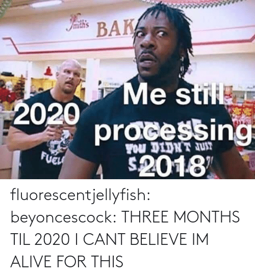 Didnt: Iamith's  BAK  Me stil  2020  pracessing  FOu DIDNT JUT  FUEH  2018 fluorescentjellyfish:  beyoncescock: THREE MONTHS TIL 2020 I CANT BELIEVE IM ALIVE FOR THIS