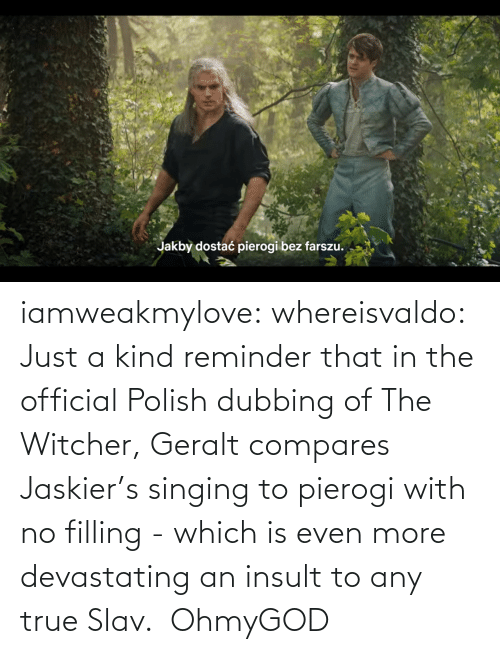polish: iamweakmylove:  whereisvaldo:  Just a kind reminder that in the official Polish dubbing of The Witcher, Geralt compares Jaskier's singing to pierogi with no filling - which is even more devastating an insult to any true Slav.    OhmyGOD