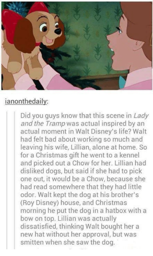 Approvation: ianontheda  Did you guys know that this scene in Lady  and the Tramp was actual inspired by an  actual moment in Walt Disney's life? Walt  had felt bad about working so much and  leaving his wife, Lillian, alone at home. So  for a Christmas gift he went to a kennel  and picked out a Chow for her. Lillian had  disliked dogs, but said if she had to pick  one out, it would be a Chow, because she  had read somewhere that they had little  odor. Walt kept the dog at his brother's  (Roy Disney) house, and Christmas  morning he put the dog in a hatbox with a  bow on top. Lillian was actually  dissatisfied, thinking Walt bought her a  new hat without her approval, but was  smitten when she saw the dog.