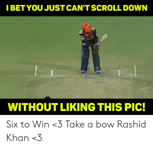 khan: IBETYOU JUST CAN'TSCROLL DOWN  WITHOUT LIKING THIS PIC! Six to Win <3 Take a bow Rashid Khan <3