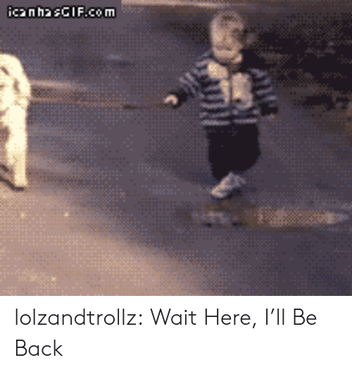 Tumblr, Blog, and Back: icanhasCIF.com lolzandtrollz:  Wait Here, I'll Be Back