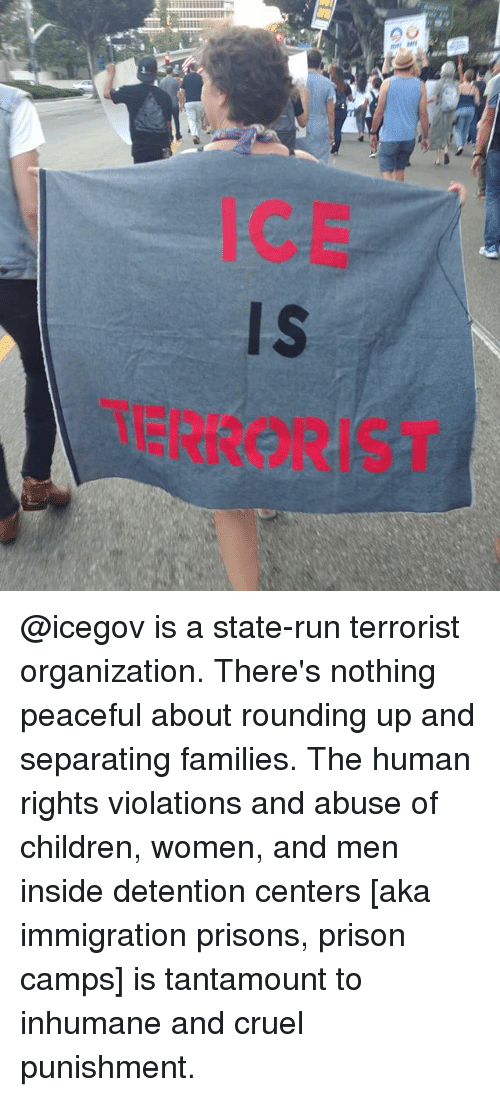 Children, Memes, and Run: ICE  Is  TERRORIST @icegov is a state-run terrorist organization. There's nothing peaceful about rounding up and separating families. The human rights violations and abuse of children, women, and men inside detention centers [aka immigration prisons, prison camps] is tantamount to inhumane and cruel punishment.