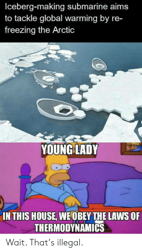 In This House: Iceberg-making submarine aims  to tackle global warming by re-  freezing the Arctic  YOUNG LADY  IN THIS HOUSE, WE OBEY THE LAWS OF  THERMODYNAMICS Wait. That's illegal.